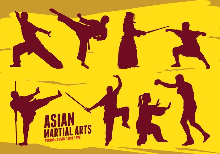 Major L. reccomend Asian matial arts