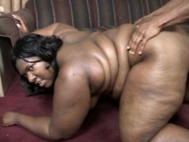 Chubby black videso