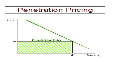 Lady L. reccomend Penetration pricing strategy