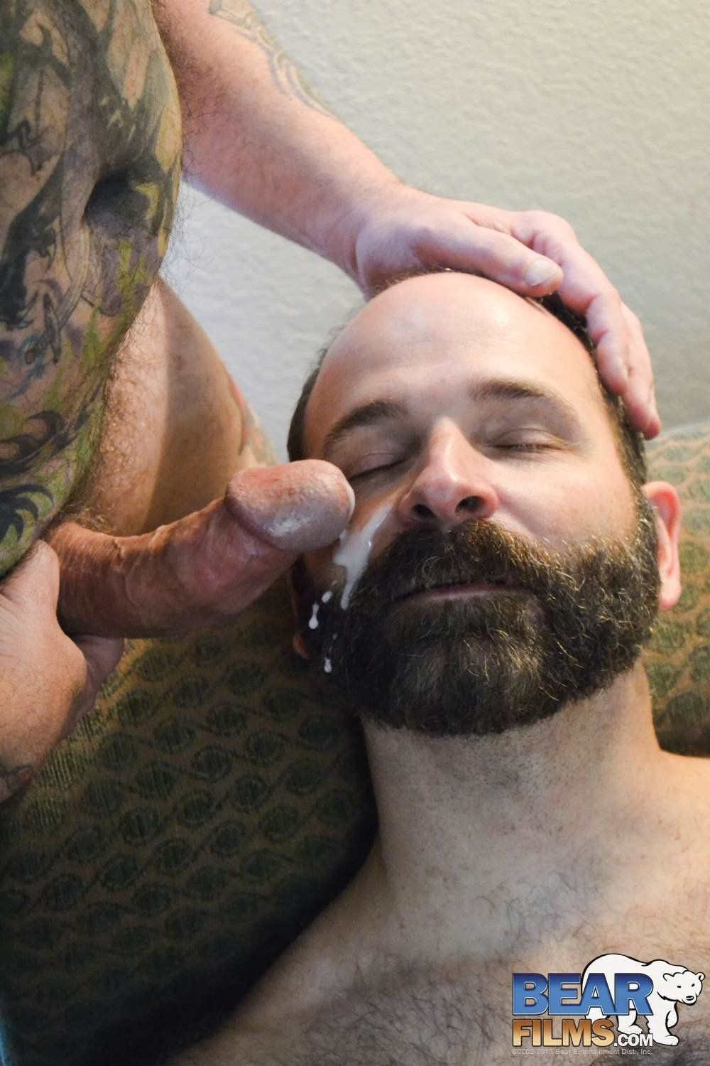Bearded bear cummed on