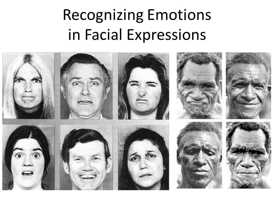 best of Recognition ppt expression Facial